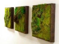 Живые картины, мох и суккуленты в дизайне интерьера