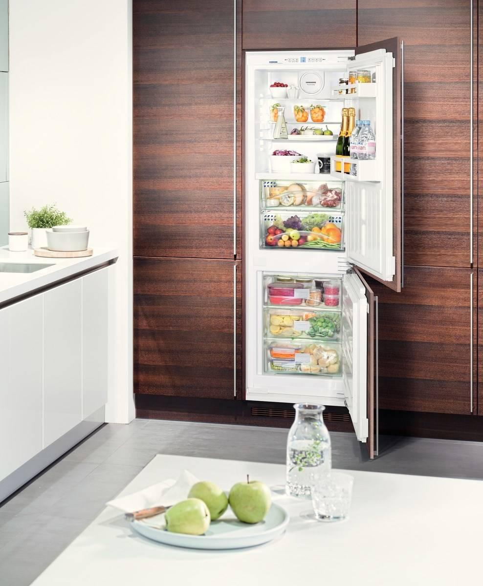 Как работает холодильник ноу фрост: принцип работы