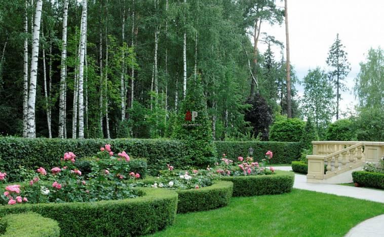 Украшения для сада: 110 фото и видео описание как сделать стильные элементы для дизайна сада