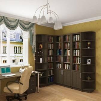 Книжный шкаф - 62 фото новинки долговечной мебели в интерьере!