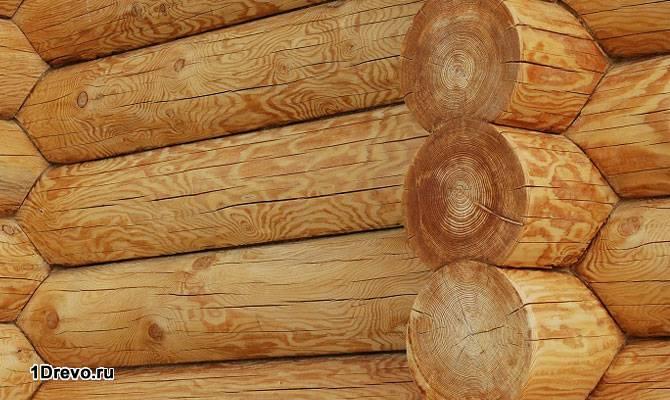 Сруб из кедра: преимущества и недостатки