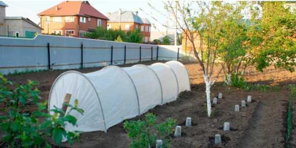 Легкий каркасный парник своими руками | сайт о саде, даче и комнатных растениях.