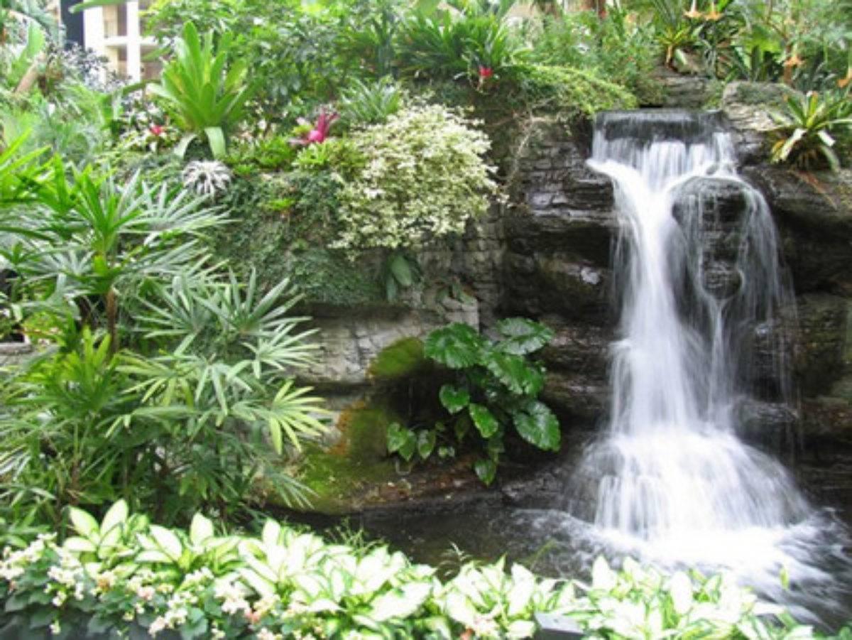 Водопад на даче: виды, составляющие, питание, изготовление, оформление