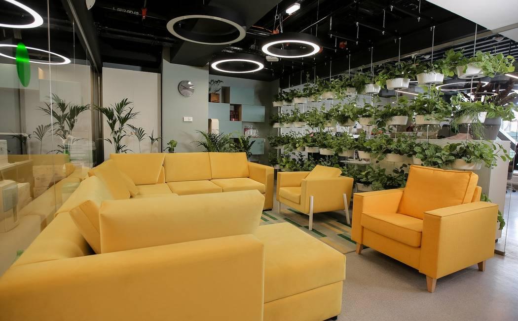 Интерьер офиса: 75 современных идей организации рабочего места