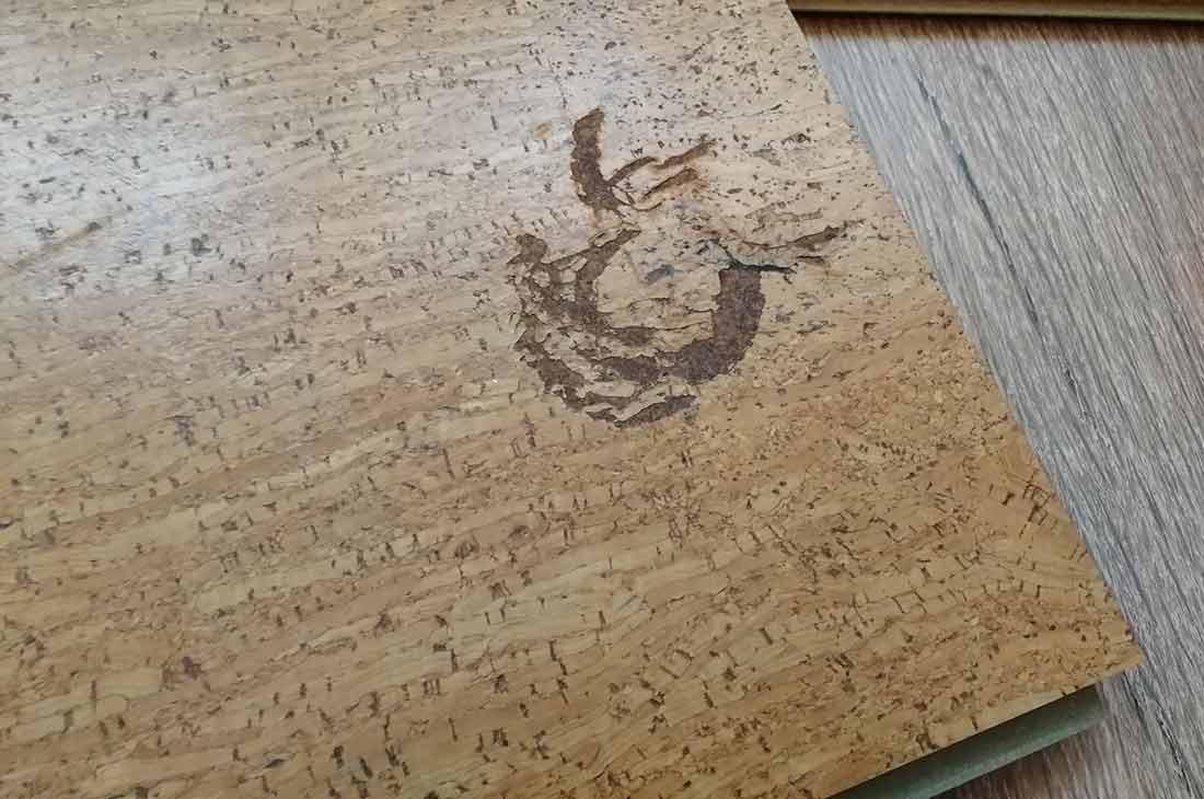 Пробковый пол (78 фото): плюсы и минусы напольного покрытия из пробки, отзывы владельцев о доске