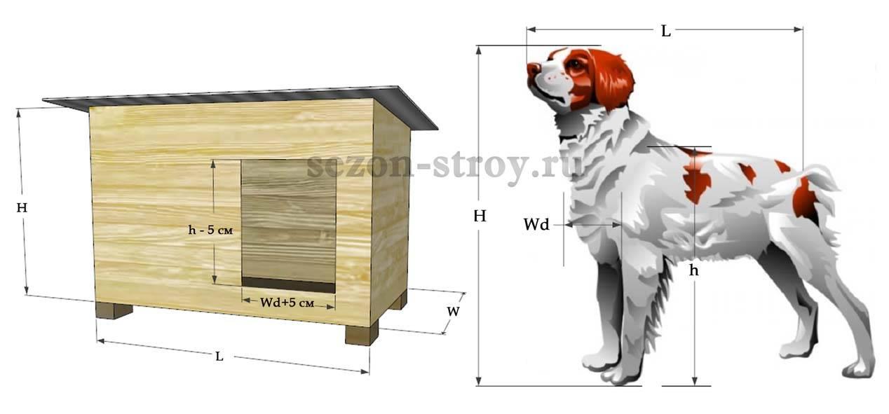Уличная будка для собаки: домик и конура, летняя, зимняя, для выводка и другие