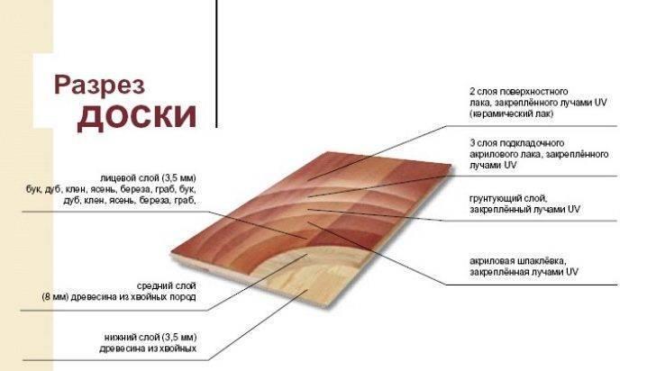 Паркетная доска barlinek (37 фото): изделия из ясеня и дуба, цвета кофе и крема, размеры и отзывы