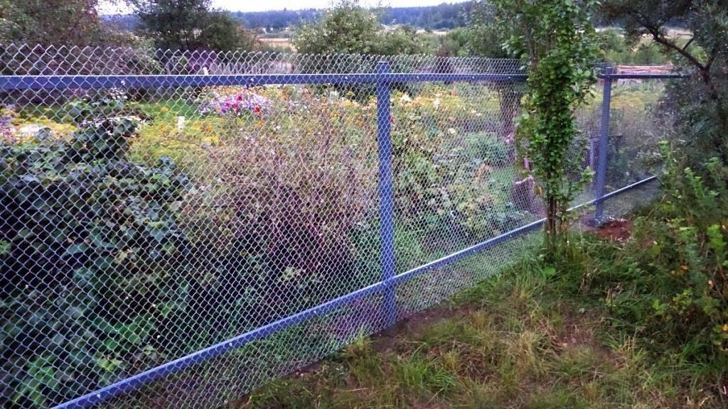 Как натянуть сетку рабицу на забор одному своими руками: на столбы с тросом, правильно повесить на крючки