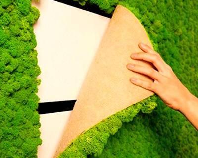 Панно из мха: из стабилизированного мха и с силиконовыми цветами на стене, другие варианты в интерьере, создание своими руками