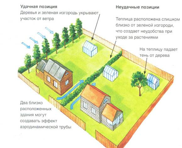 Как правильно расположить (поставить) теплицу на участке: ориентация по сторонам света и другие правила, варианты схем, отзывы