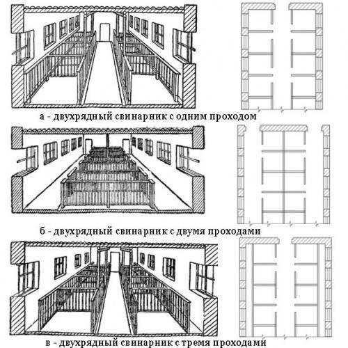 Особенности строительства свинарника
