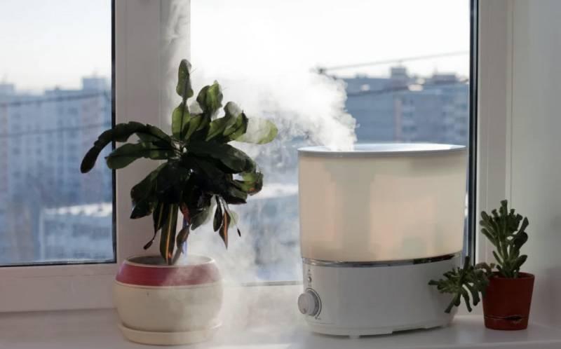 Если дома неуютно — 6 полезных советов для здорового микроклимата: Влажность, освещение, шум, уровень кислорода