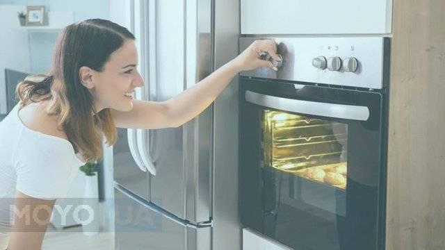 Как правильно выбрать газовую или электрическую встраиваемую духовку