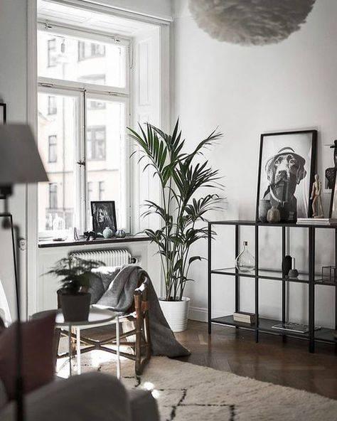 Как самим создать уют на съёмной квартире: 7 простых шагов