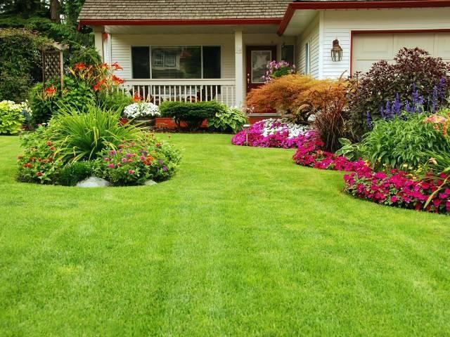 Ландшафтный дизайн участка перед домом (62 фото): украшение ландшафта на территории таунхауса своими руками, простой декор хвойными растениями в современном стиле