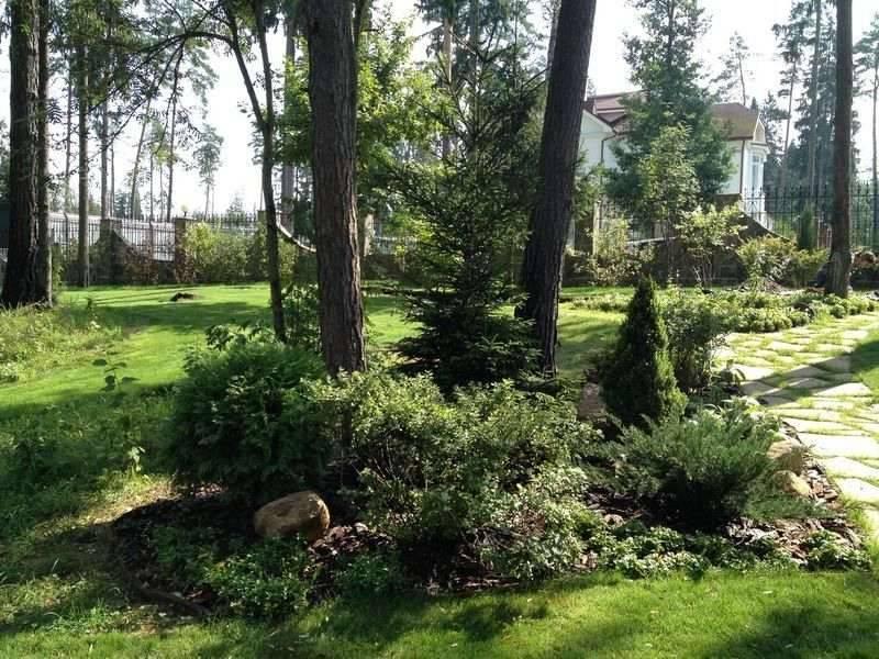Свежие идеи дизайна садового участка площадью 6 соток