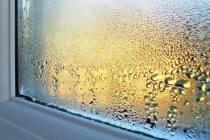 Причины запотевания пластиковых окон в зимний период