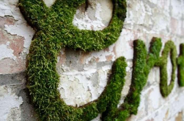 Искусственный мох для декора стен - существующие варианты