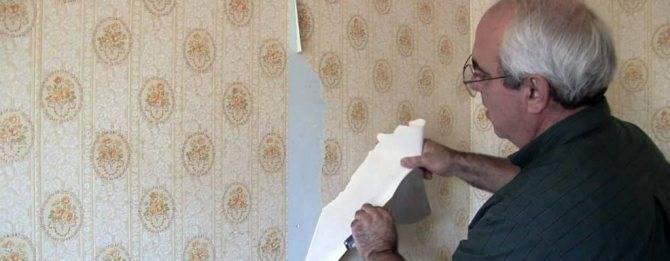 Бумажные или флизелиновые обои: сделать выбор и не ошибиться