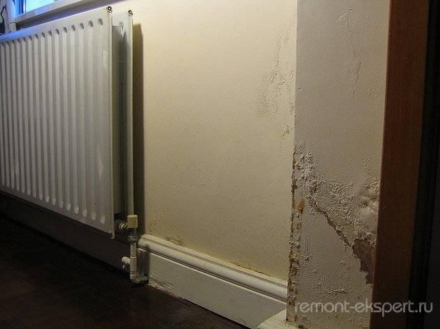Мокрые стены: причины и способы избавления от сырости