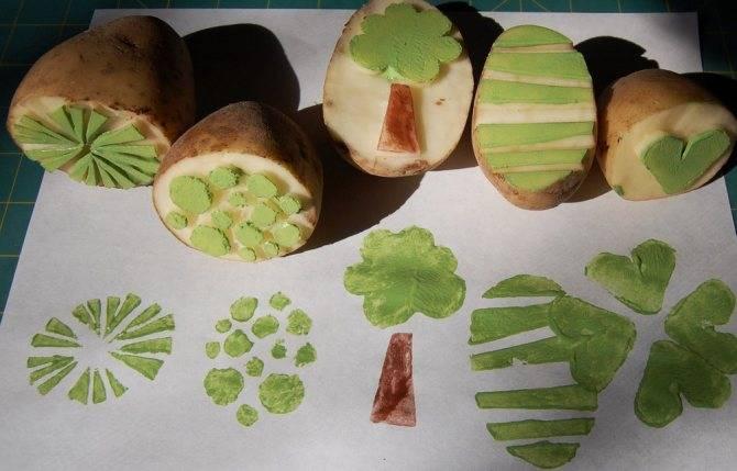 Шаблоны поделок из крупы для детей своими руками (185+фото)