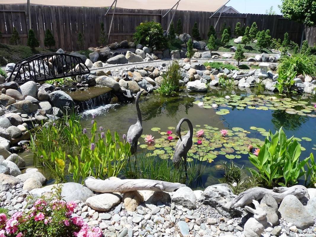 Как установить и оформить пластиковый пруд в саду