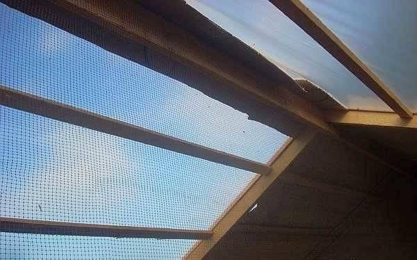Летний курятник (38 фото): чертежи сарая с размерами на 5, 10 и 20 кур и правила устройства своими руками, как построить сооружение на даче летом