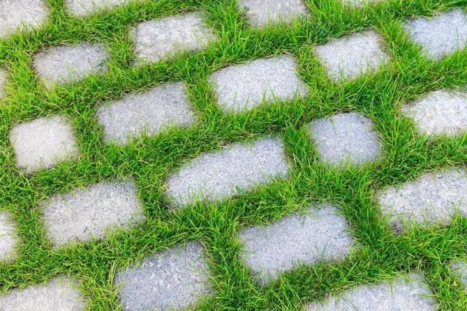Как избавиться от травы между тротуарной плиткой: убрать чтобы не росла трава, средство для удаления