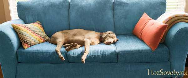 Как почистить диван быстро и эффективно в домашних условиях