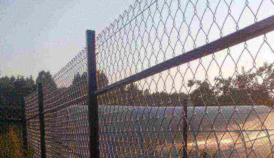 Забор из сетки: 85 фото как установить пластиковую и металлическую сетку