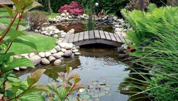 Как своими руками сделать пруд из покрышки? пошаговая инструкция, варианты водоемов