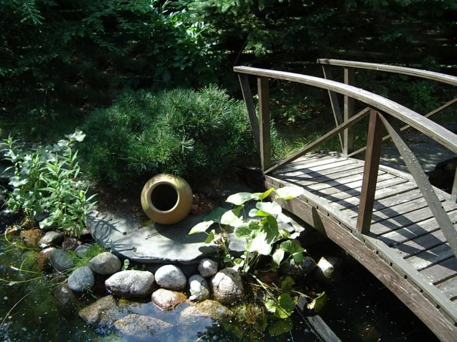 Оформление пруда на даче своими руками: примеры обустройства