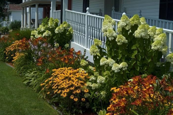 Как сделать цветники и клумбы цветущие все лето на даче своими руками? 93 фото названия однолетников и многолетников, какие низкорослые растения посадить