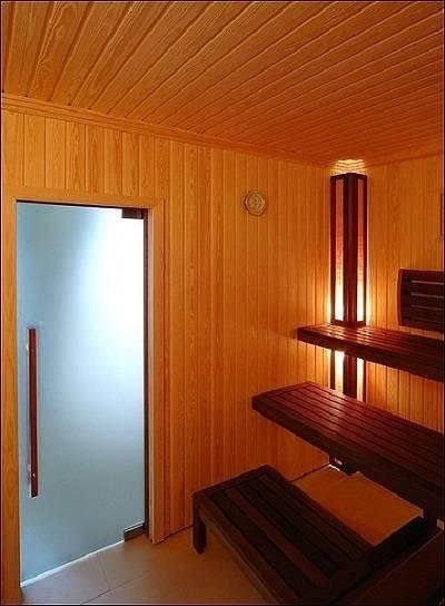 Стеклянная дверь в парилку и сауну: размеры, фото, цена