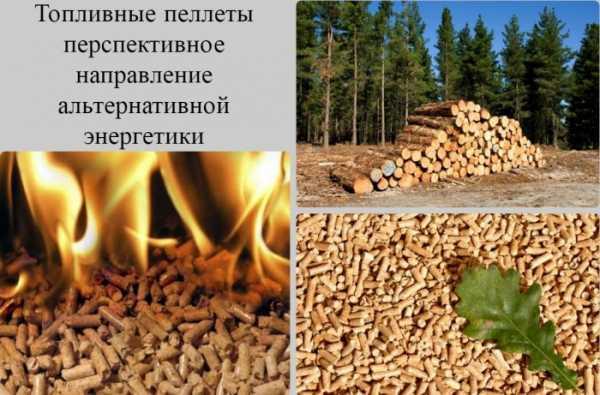 Травяные гранулы: технология производства и оборудование, а также создание своими руками