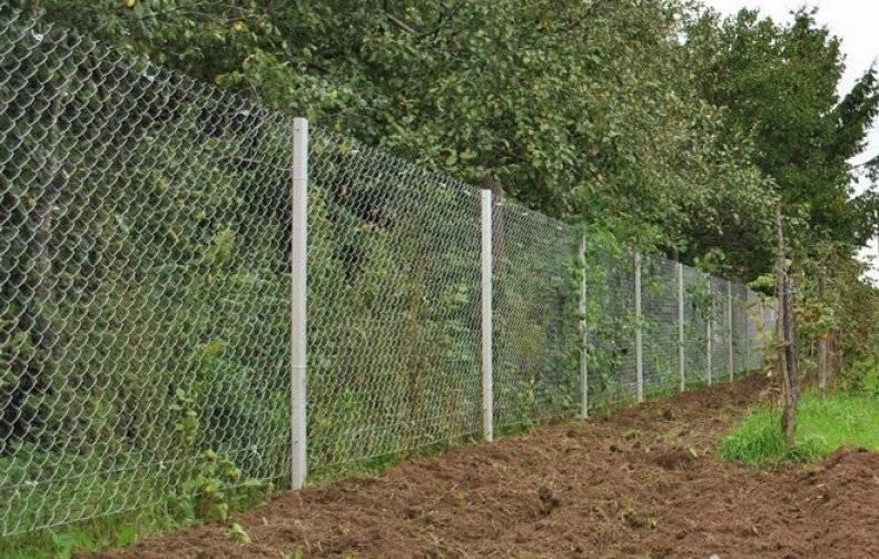 Как сделать забор из сетки рабицы - пошаговая инструкция!
