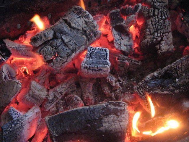 Какие дрова лучше для отопления — выбираем и храним правильно