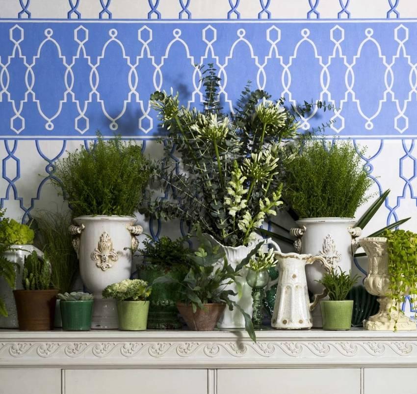 Бордюры обои для стен: какие бывают по форме, цвету и материалу, область применения и варианты отделки в кухне, ванной или в спальне