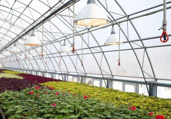 Отопление теплицы способы обогреть теплицу зимой и ранней весной