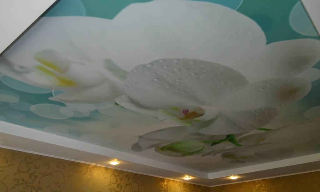 Дизайн натяжных потолков: примеры оформления комнат, 75 фото
