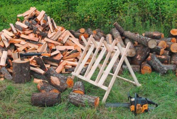 Как правильно пилить деревья бензопилой: крупные, небольшие, выбор инструмента, инструкция по спилу и валке, техника безопасности