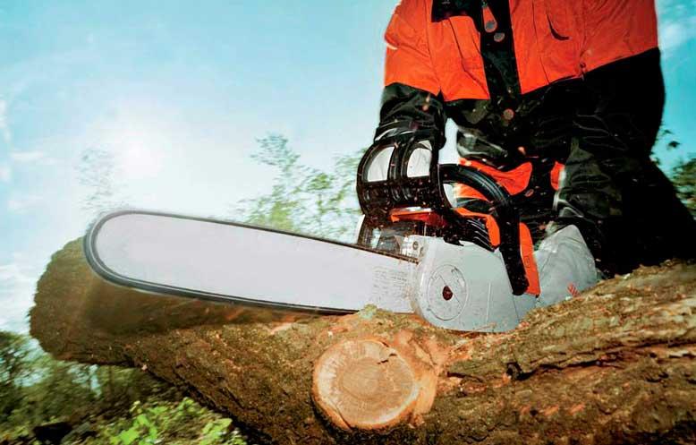 Как правильно пилить деревья бензопилой: особенности спилов, необходимые инструменты, техника валки