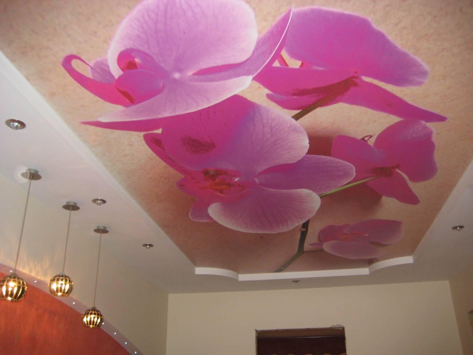 Натяжной потолок в прихожей (80 фото) - красивые идеи дизайна потолка