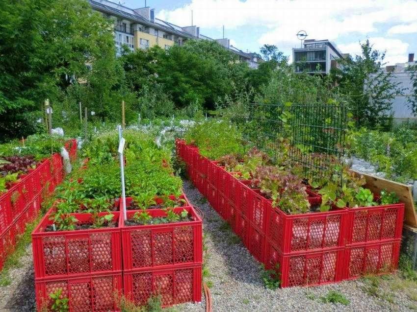 Модульный огород - огород