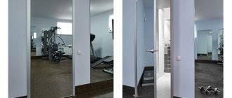 Раздвижные двери: фото, плюсы и минусы, виды, материалы, цвета, стили, дизайн