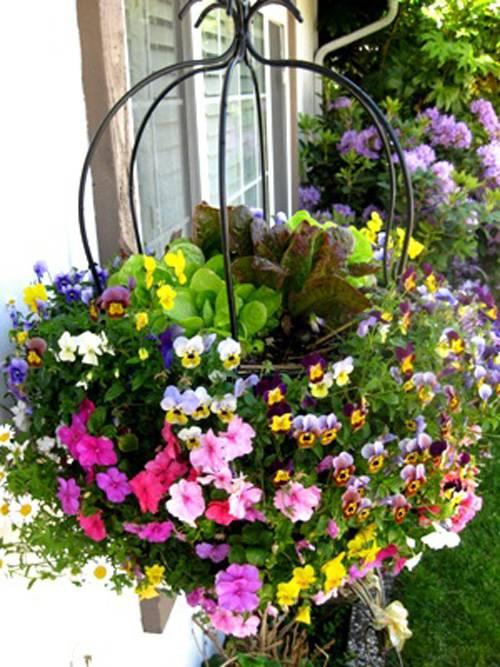 Вазоны для цветов - уличные горшки: рекомендации по изготовлению уличных ёмкостей для выращивания цветов