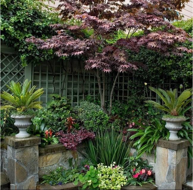 Вазон (78 фото): что это такое, уличные кованые изделия для цветов, декоративные пластиковые горшки, растения, цветущие все лето