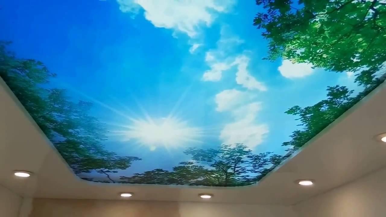 Натяжные потолки 3d (46 фото): потолочные покрытия с эффектом 3d, модели с рисунком и фотопечатью, увеличивающие пространство