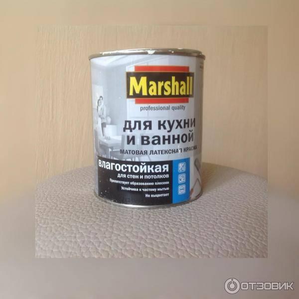 Моющаяся краска для стен на кухне: как покрасить своими руками