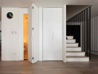 Складные межкомнатные двери-книжка: фото и цены, модели, материалы